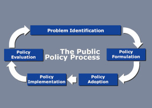 Public Policy Process Diagram Mott 2011 grey